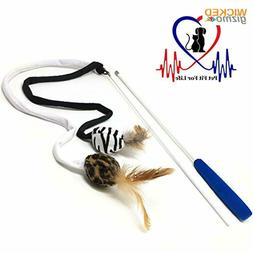 Pet Fit For Life 2 Ball Feather Teaser and Exerciser For Cat