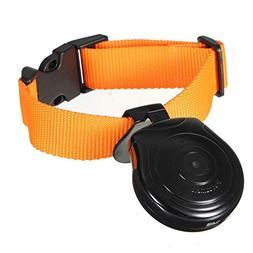 Digital Color Gift Box Package Pet Collar Cam Camera DVR Vid