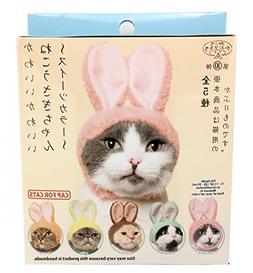 Kitan Club Cat Cap - Pet Hat Blind Box Includes 1 of 6 Cute