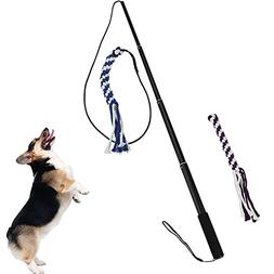 S WIDEN ELECTRIC Flexible Pet Training Stick,with Two Heads,
