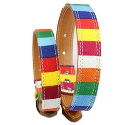 Smdoxi Pet Nautical Flags Flame Stitch or Rainbow Designer D