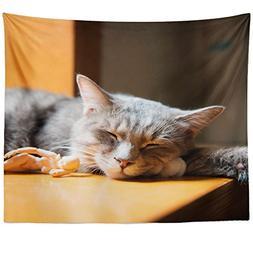 Westlake Art - Cat Mammal - Wall Hanging Tapestry - Picture