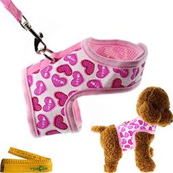 Bright Mesh Heart Printed Dog Cat Pet Vest Harness and Match