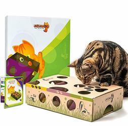 Cat Amazing – Best Cat Toy Ever! Interactive Treat Maze &