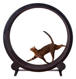 Cat Exercise Running Wheel  Indoor Kitty Play Toy Training T