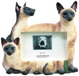 E&S Pets 35297-6 Large Cat Frames