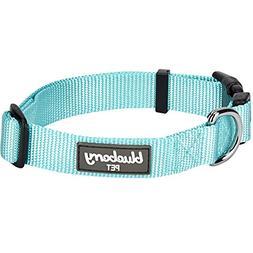 Blueberry Pet 32 Colors Classic Dog Collar, Mint Blue, X-Sma
