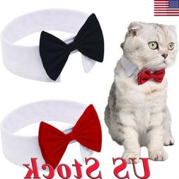 dog cat pet tie puppy toy bow
