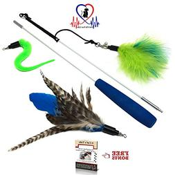 Pet Fit For Life Feather Teaser and Exerciser for Cat and Ki