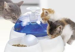 Fresh and Clear Drinking Fountain Water with Food Bowl for C