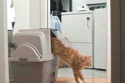 Hagen SmartSift Litter Box Cat Sifting Automatic Pan Scoop C