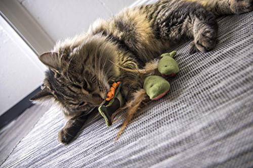 SmartyKat and Catnip