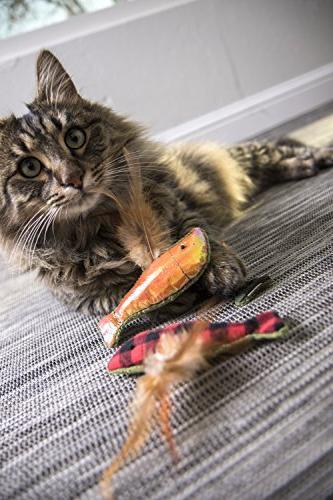 SmartyKat and Catnip Cat