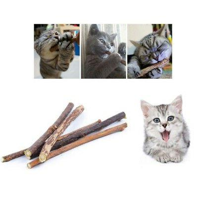 Natural Silvervine Cat Chew Stick Molar Clean Pet Toy US