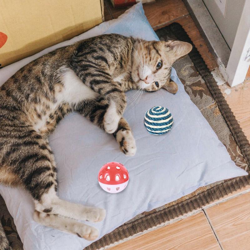 10Pcs Set Pet Lot Catnip Kitty Interactive
