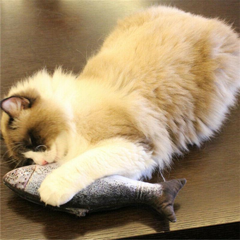 20/30/40/60CM Funny Cats Fish Plush Pet