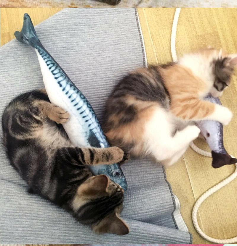 20/30/40/60CM Funny Fishes Cats Fish Pet Toys
