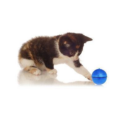 2019 Ball - Pet's Joy when Cat