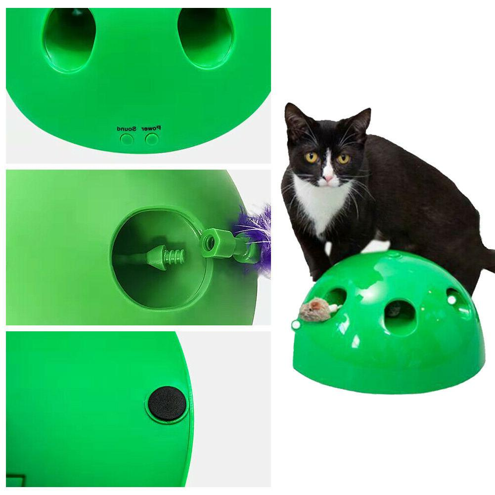 2019 N' Play Motion Toy Pet