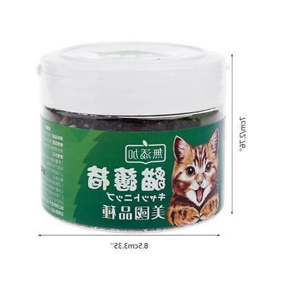 Natural Organic Cat Health Supplies