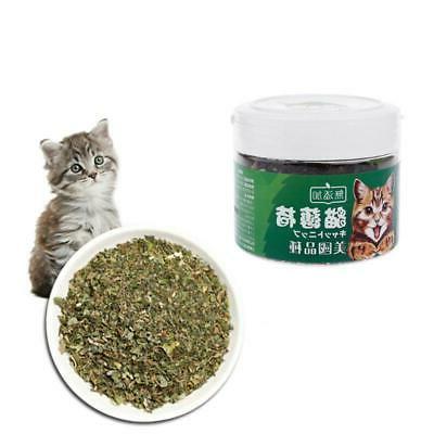 Natural Natural Mint Taste Health Supplies