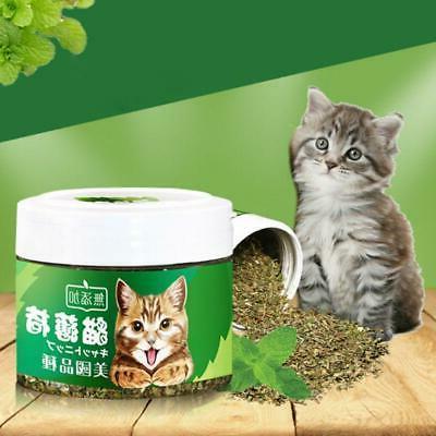 natural organic cat catnip natural mint taste