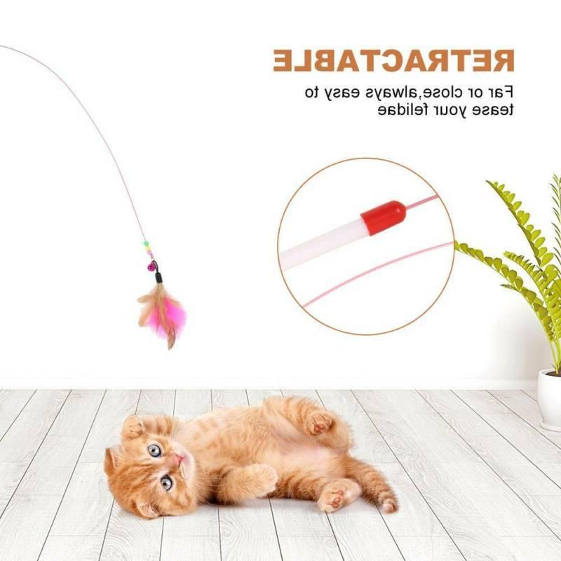 Play Kitten Rod Mouse Feathers Bells Balls