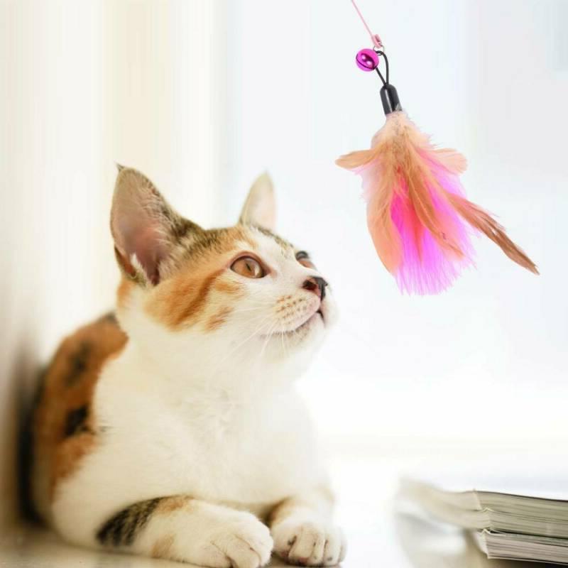20pcs Cat Play Rod Mouse Feathers Bells Balls