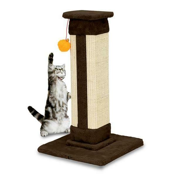 """21"""" Tower Cat Cats Coffee"""