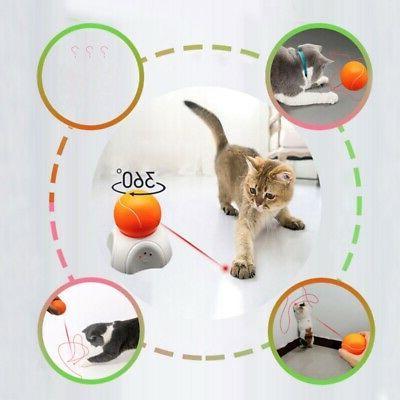 360 Fun Cat