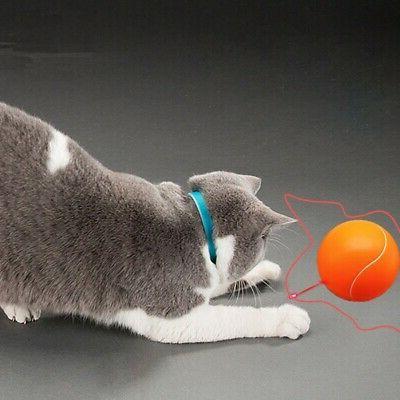 360 Degree Automatic Interactive Dart Laser Teaser Fun Cat