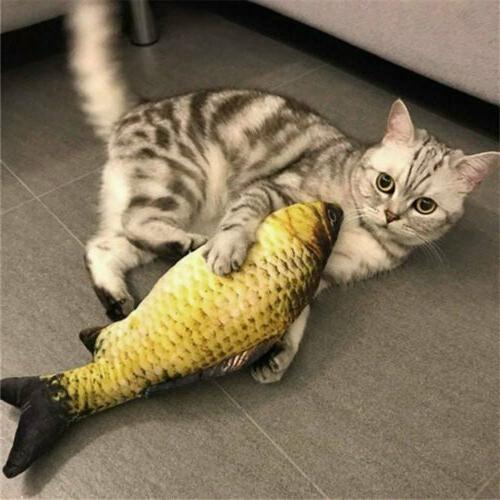 5 Fish Pet Toys