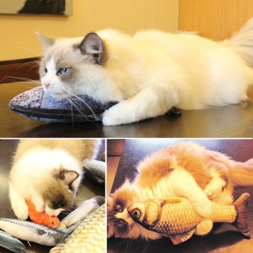 5PCS Toys for 20 Cat Pillow, Catnip