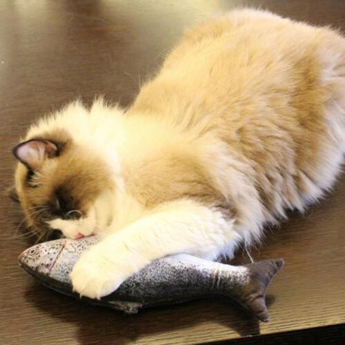 5PCS Fish for Cat, Cat Toys, Cat Pillow, Cat Catnip