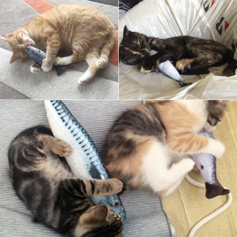 5X Fish Funny Crazy Catnip Pet Toys Interactive Gift