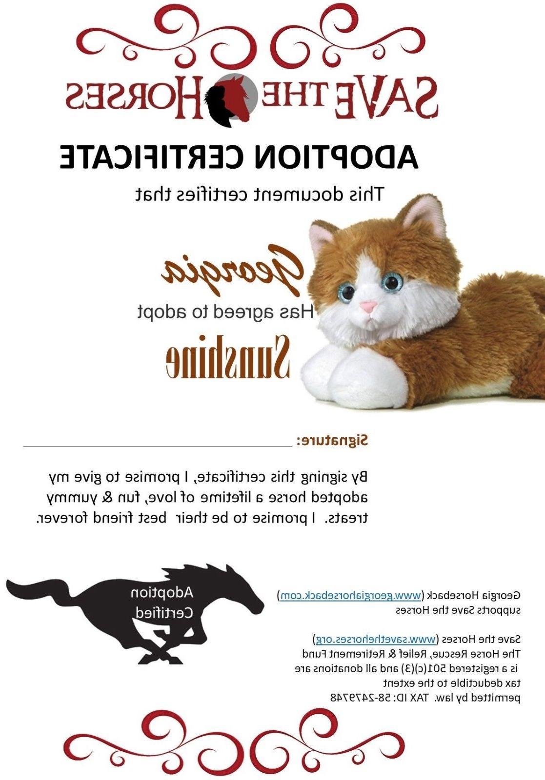 8 Mini Flopsie Kitty Cat Plush Adoption Cert