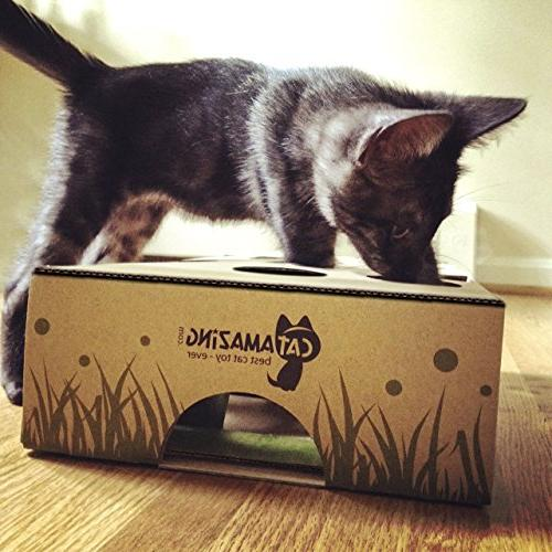 Cat Amazing – Cat Toy Interactive Feeder for