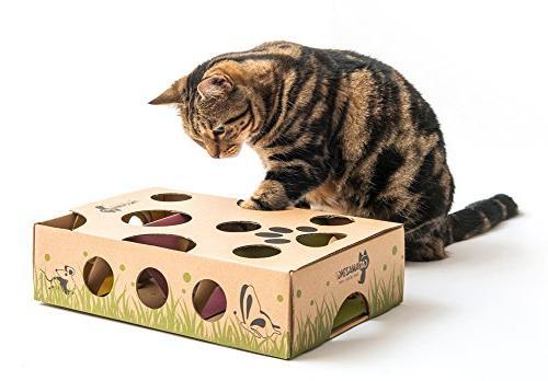 Cat Treat Maze & Puzzle Feeder Cats