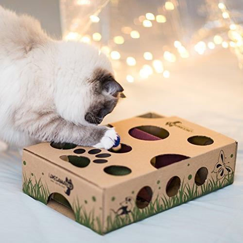 Cat Amazing Cat Treat Maze Feeder Cats