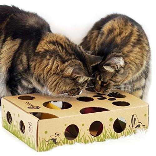 Cat Amazing – Cat Treat Maze & Feeder