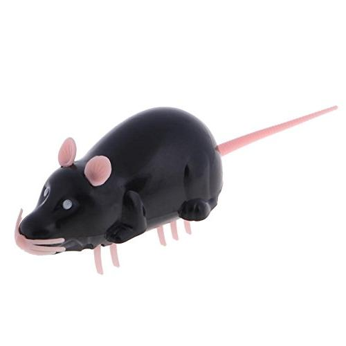 Jocestyle Cute Insect Mouse Shape Electric Cat Interactive P
