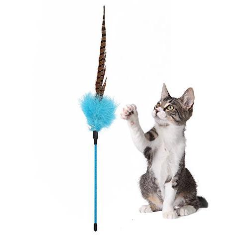 PetPals Cat Teasing Three with Green, Orange Blue