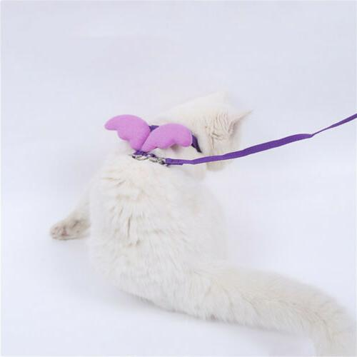 Angel Leashes Adjustable For 2019