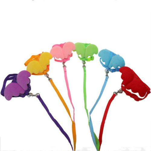 angel pet dogs cats leashes and collars