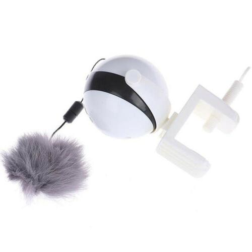 Automatic Motion Cat Toy Pet USA