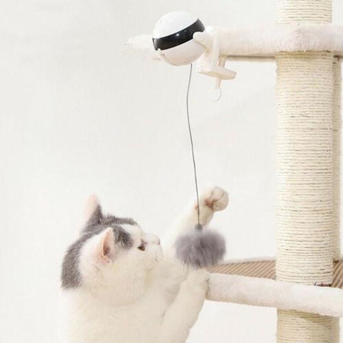 Automatic Motion Pet Toys