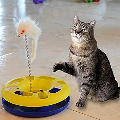ball track cat toy