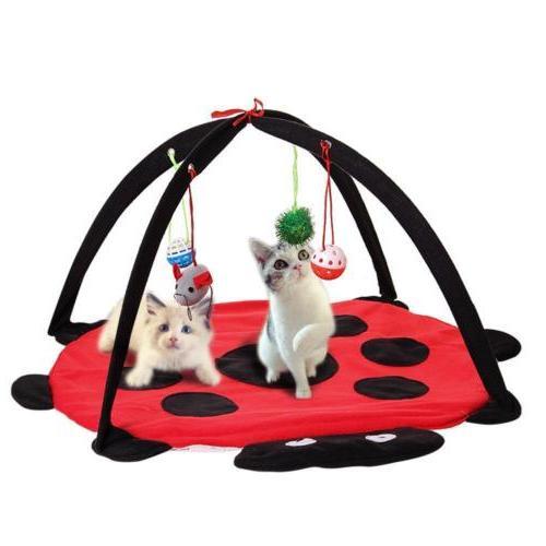 Cat Bed Pet Tree House Scratcher Play KittenTower