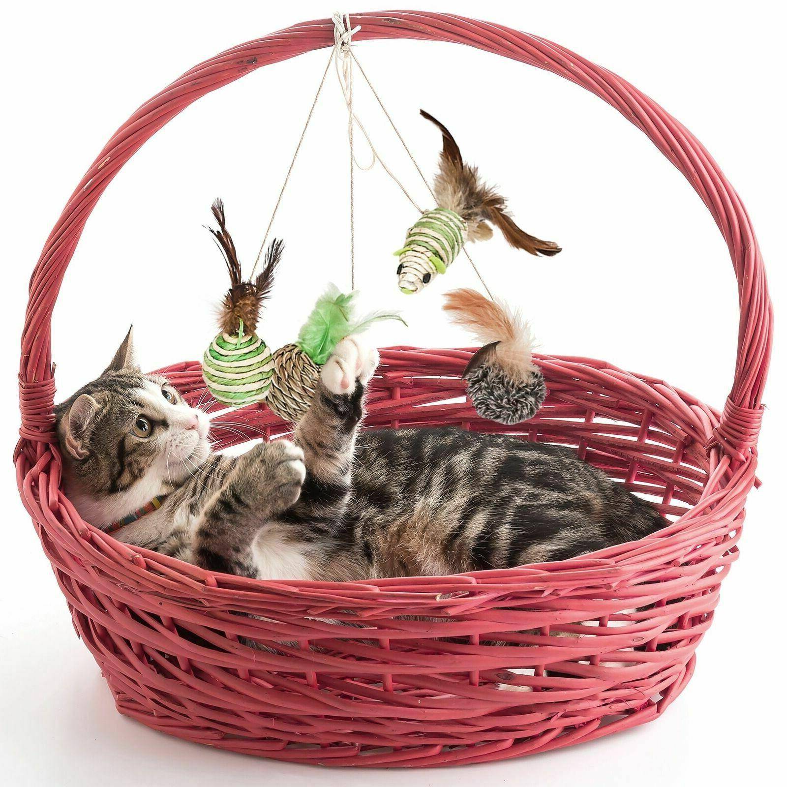 Cat - Includes Toys & 1 for Food, Alimentation...
