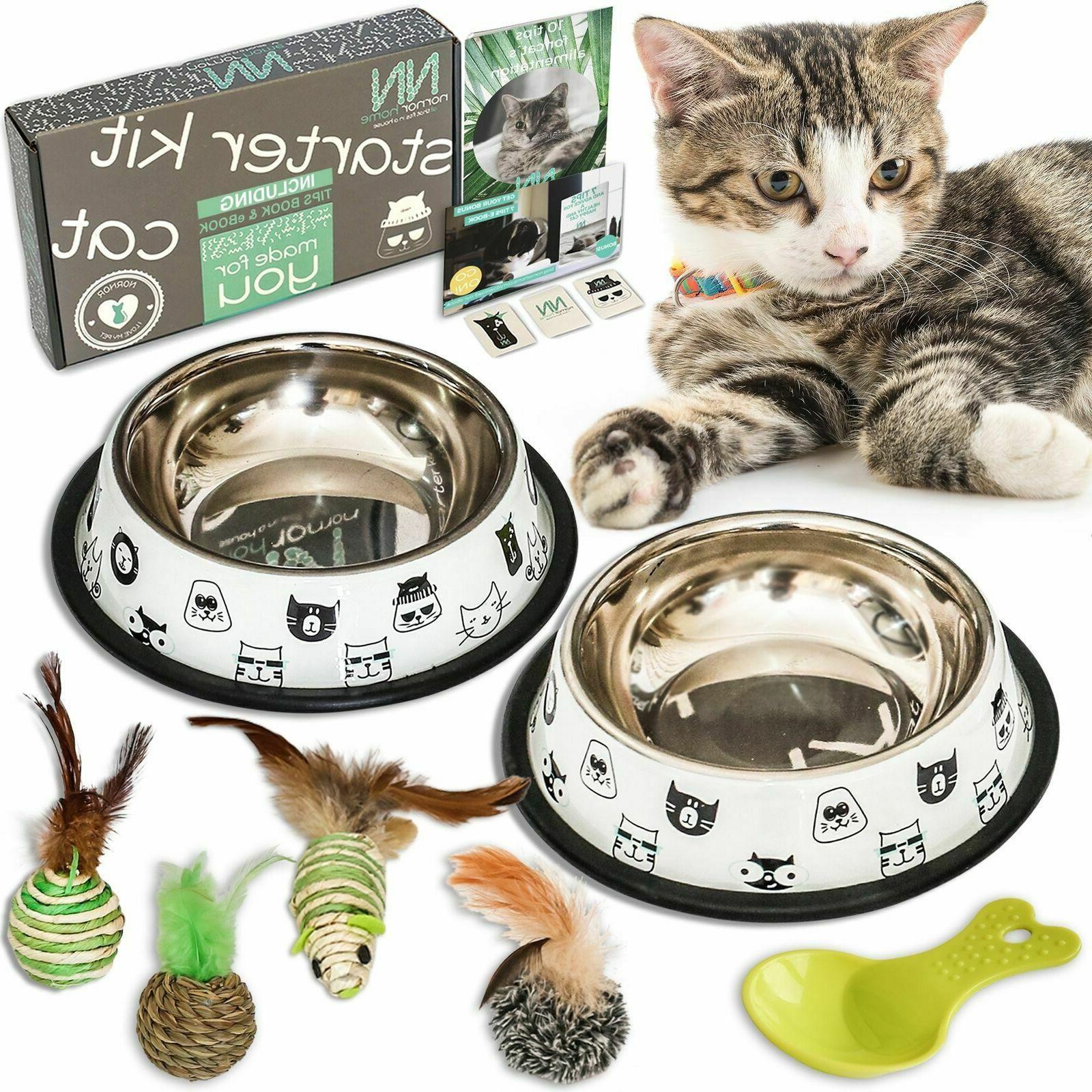 cat bowl set includes 2 bowls 4